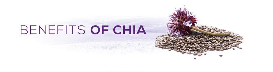 Chia Benefits